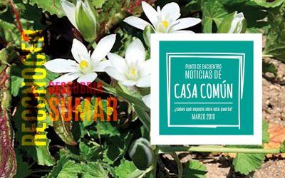 Casa Común. Marzo 2019