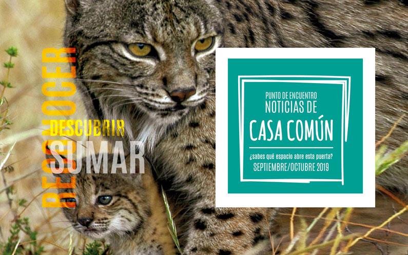 Casa Común. Septiembre/Octubre 2019